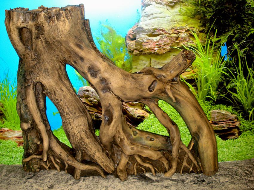 Они не только создают укрытия для рыб но и делают акцент на определённый стиль аквариума.